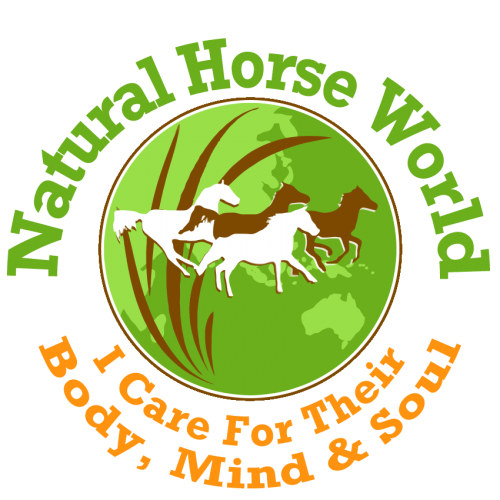 Natural Horse World